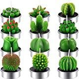 Tatuo 12 Pieces Cactus Candles Succulent Cactus Rose Tealight Handmade Candles for Teatime Spa Home Party Wedding Decoration Gifts