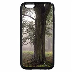 iPhone 6S / iPhone 6 Case (Black) Mist in the autumn forest