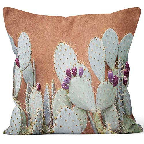 (Nine City Prickly Pear Cactus Against Brown Adobe Wall Throw Pillow Cushion Cover,HD Printing Decorative Square Accent Pillow Case,20