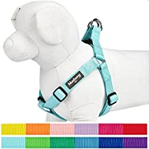 """Blueberry Pet Step-in Classic Dog Harness, Chest Girth 16.5"""" - 21.5"""", Mint Blue, Small, Adjustable Harnesses for Dogs"""