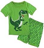A&J Design Boys' Dinosaur Pajamas Toddler Summer Short Sets(2T, Green)
