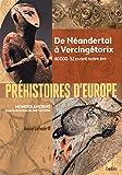 Préhistoires d'Europe : De Néandertal à Vercingétorix. 40 000-52 avant notre ère