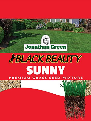 Jonathan Green Full Sun Grass Seed, 1-Pound