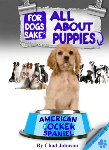 - All About American Cocker Spaniel Puppies