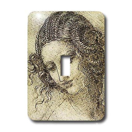 Leda Metal Desk - 3dRose lsp_5311_1 Leda Light Switch Cover