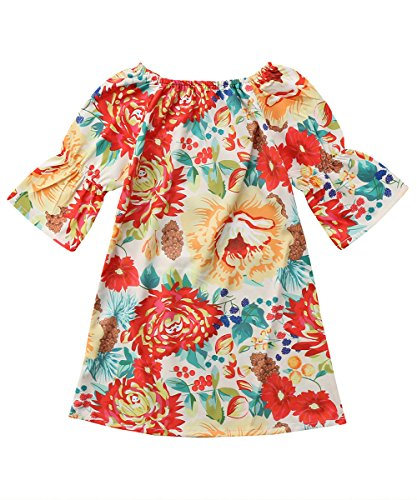 Infants Baby Girls' Long Sleeve Flower Sundress Casual Outfit Dresses (Floral, (Retro Baby Clothes)