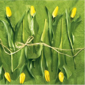 Paper Cocktail Napkins 40pcs Spring Yellow Tulips on Green