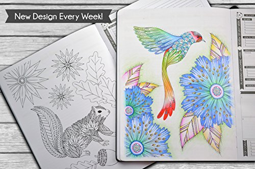 Panda Planner Color - Coloring Book & Weekly Planner for Productivity &  Happiness - Weekly Layout, Daily Gratitude, Personal Organizer All-in-1! ...