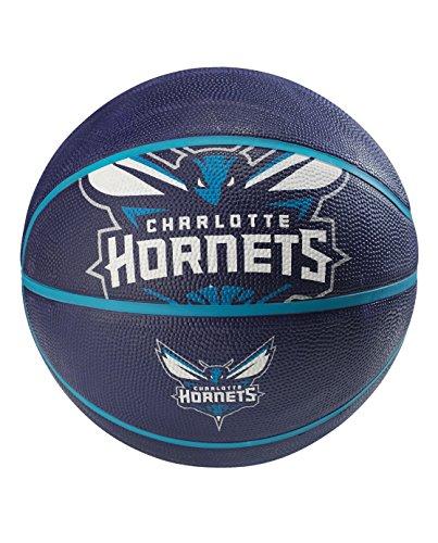 NBA Charlotte Hornets Spaldingteam Logo, Multi, 29.5'' by Spalding