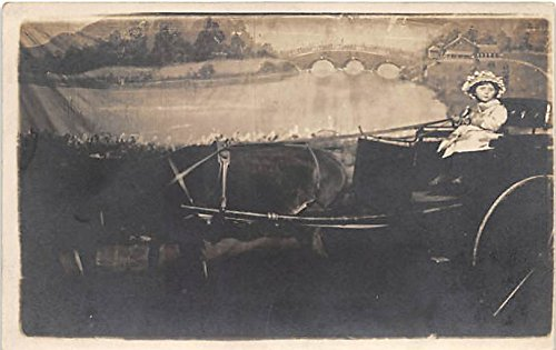 Carriage Postcard Post Card -