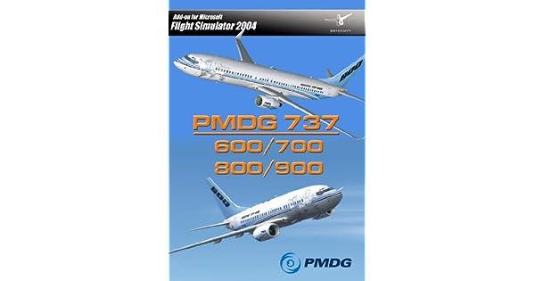 Amazon com: PMDG 737 600/700/800/900 (PC) (UK): Video Games