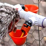 Lucky Farm Automatic Chicken Drinker Cups Poultry