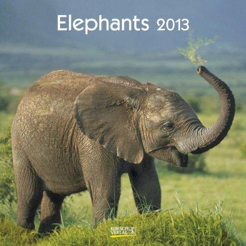 Elephants 2013. Broschürenkalender
