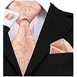 Barry.Wang Light Orange Silk Necktie Set for Men Wedding,Orange,One Size