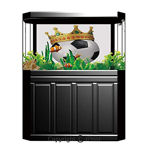 Terrarium Fish Tank Background,King,Football Soccer Championship Inspired Ball Crown with Ornaments Image Print,Black White and Gold,Photography Backdrop for Pictures Party Decoration,W48.03