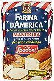 "Spadoni Farina ""0"" Manitoba Gr.1000"