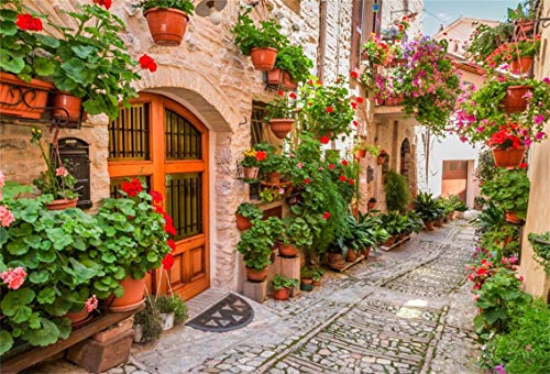 - Leyiyi 10x8ft Italian Town Street Ally Backdrop Spring Flowers Medieval Architecture Summer Holiday Travel Europe Photo Background Children Baby Adults Wedding Portrait Shoot Studio Vinyl Prop