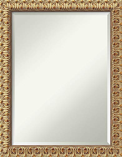 Amanti Art Framed Florentine Gold Solid Wood Wall Mirrors, Glass Size 18x24,