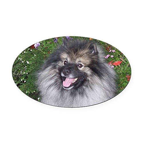 CafePress - Keeshond Smiling Oval Car Magnet - Oval Car Magnet, Euro Oval Magnetic Bumper Sticker