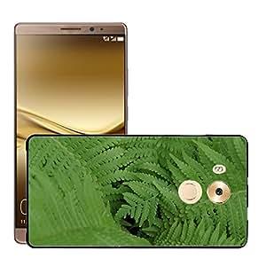 Print Motif Coque de protection Case Cover // M00156849 Fern hojas verdes hojas de las plantas // Huawei Ascend Mate 8