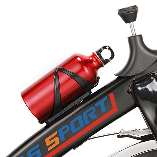 Anmas Sport Health & Fitness Pro Indoor Cycling Bike (Red)