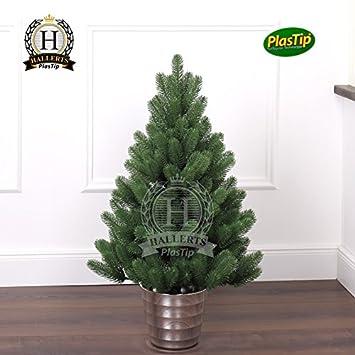 Weihnachtsbaum im topf wird braun europ ische weihnachtstraditionen - Weihnachtsbaum im topf kaufen ...
