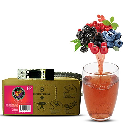 (Bar Beverages Ahui Punch Craft Fruit Punch (3 Gallon Bag-in-Box Syrup Concentrate) - Box Pours 18 Gallons of Fruit Punch - Use with Bar Gun, Soda Fountain or SodaStream)