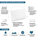 Power of Nature Memory Foam Pillow for