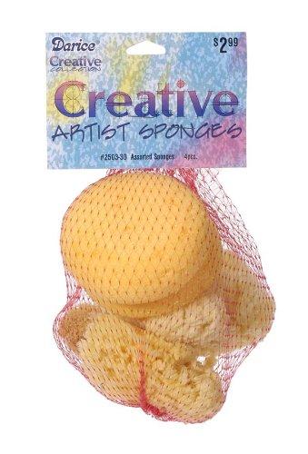Darice Assorted Sponge Package