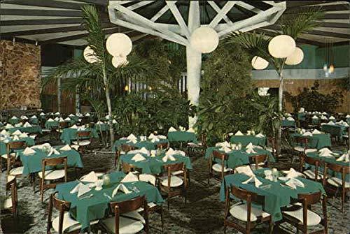 Sand Dollar Restaurant and Lounge - Tropical Garden Room St. Petersburg, Florida Original Vintage Postcard (Lounge Sand Dollar)