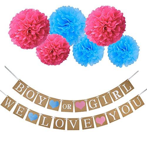 Resinta Boy or Girl Banner Gender Reveal Flag Tissue Paper Pom Poms Flower for Baby Shower Decorations Gender Reveal Party Favors Pregnancy Announcement