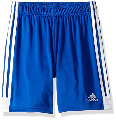 (adidas Tastigo19 Youth Soccer Shorts, Bold Blue/White, Large)