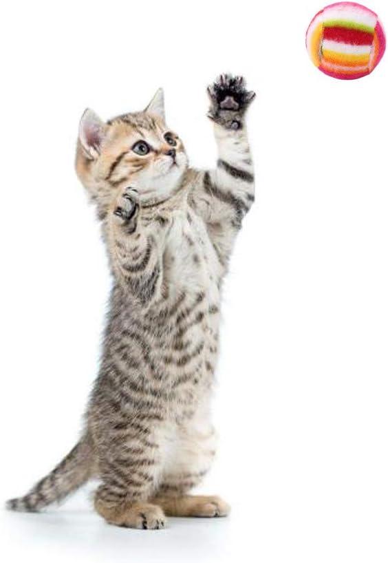 CAOQAO - Juguete de Gato, Pelotas de Colores para Mascotas, Perro ...