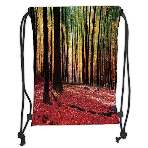 New Fashion Gym Drawstring Backpacks Bags,Nature,Warm Autumn Scenery in Forest Sun Rays Through Trees Image Print,Dark Coral Marigold and Green Soft Satin,Adjustable String Closur