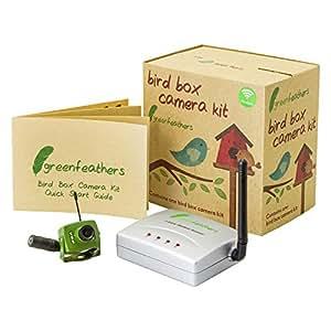 Green Feathers Cámara inalámbrica Caja de Aves con visión Nocturna, Receptor inalámbrico, 700TVL de vídeo y Audio, Enchufe británico: Amazon.es: Bricolaje y ...