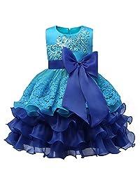 WEONEDREAM Girl Dress Embroidered Sequins Ruffles Sleeveless Flower Wedding Dresses