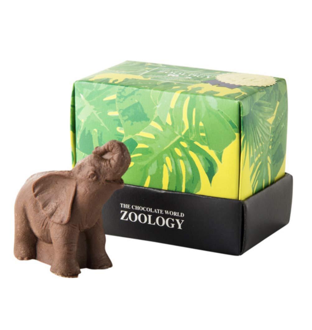 Zoologyのコゾウのチョコレート