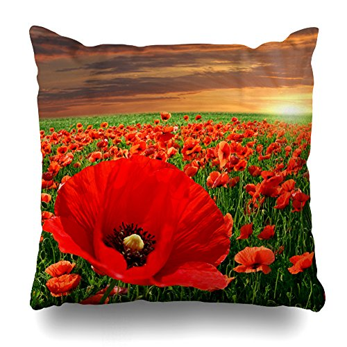 KJONG Poppy Flower Field At Sunset Zippered Pillow Cover,18X18 inch Square Decorative Throw Pillow Case Fashion Style Cushion Covers(Two Sides Print)