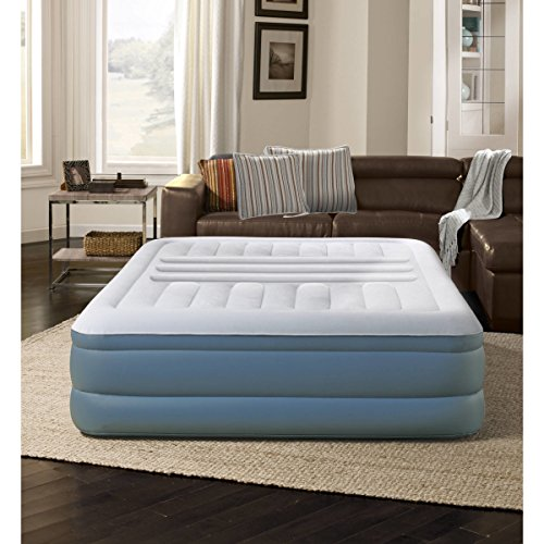 Theme Loft Bed (Lumbar Lux AirBed Mattress Raised with Built-In Pump, Queen)