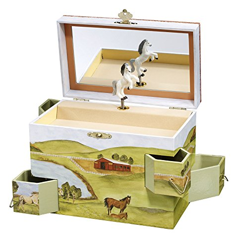 Ladies Jewelry Case (Enchantmints Hideaway Horse Music Jewelry Box)