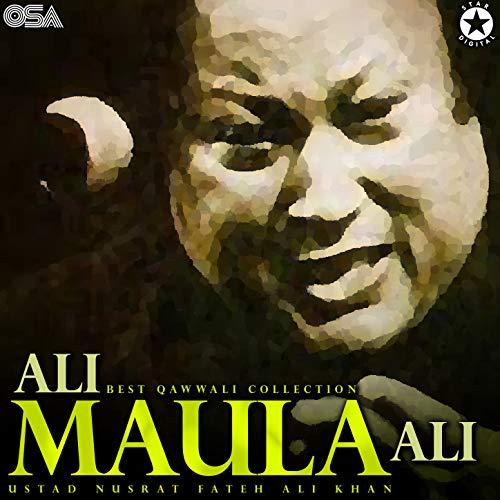 Ali Maula Ali - Best Qawwali Collection