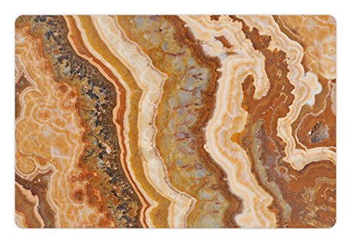 Ambesonne Marble Print Pet Mat for Food and Water, Onyx Marble Motif Travertine Mineral Formed Watercolor Ink Textured Illustration, Rectangle Non-Slip Rubber Mat for Dogs and Cats, Multicolor