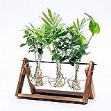 Cyan Shirt Walnut Stand Glass Planter Bulb Vase with Metal Swivel Holder for Hydroponics Plants