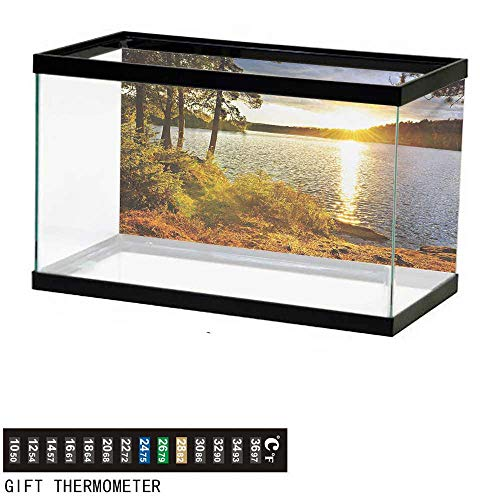 wwwhsl Aquarium Background,Landscape,Sunset Dawn in The Forest Over Lake of Two Rivers Algonquin Park Ontario Canada,Multicolor Fish Tank Backdrop 48