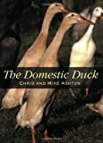 The Domestic Duck