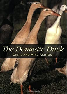 Storey's Guide to Raising Ducks, 2nd Edition: Amazon co uk