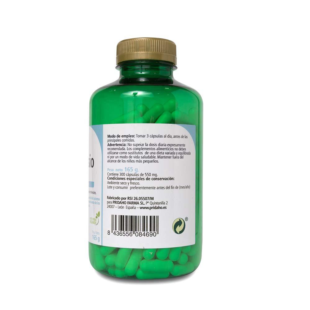 SANON Magnesio Bisglicinato 300 cápsulas vegetales de 550 mg: Amazon.es: Belleza