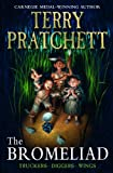 Front cover for the book Wings by Terry Pratchett