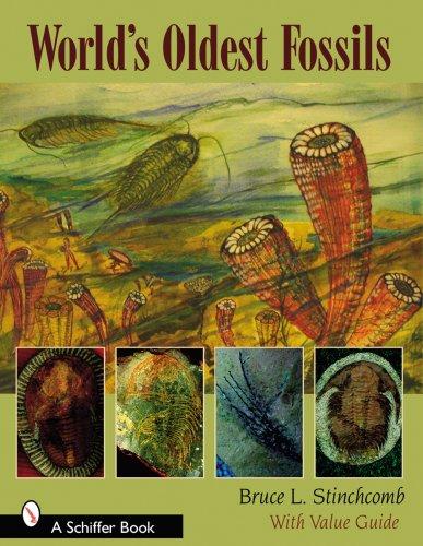 Download World's Oldest Fossils pdf