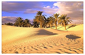 sites de rencontre Palm Desert sites de rencontres dominicaines